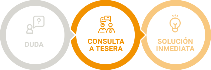 consultoria-grafico